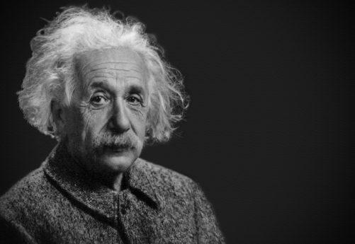 Albert Einstein the homeschooler